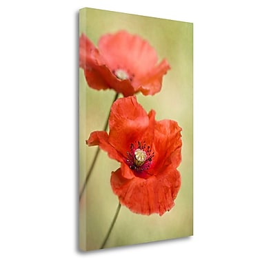 Tangletown Fine Art 'Papaver Passion' Graphic Art Print on Wrapped Canvas; 36'' H x 24'' W
