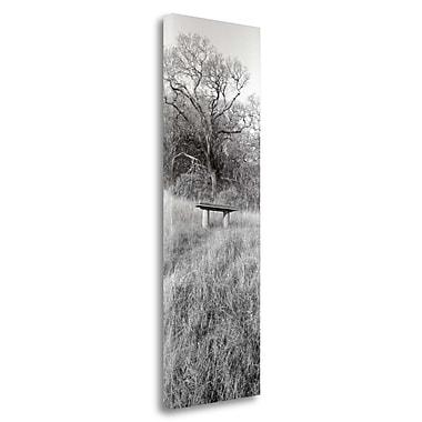 Tangletown Fine Art 'Novato Oak' Photographic Print on Wrapped Canvas; 48'' H x 16'' W