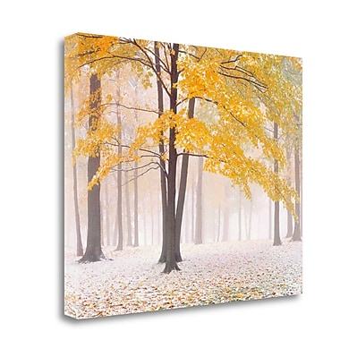 Tangletown Fine Art 'Early Autumn Snow' Graphic Art Print on Wrapped Canvas; 28'' H x 36'' W