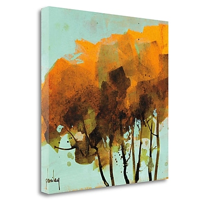 Tangletown Fine Art 'Seven Trees' Print on Wrapped Canvas; 30'' H x 30'' W
