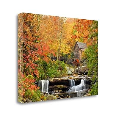 Tangletown Fine Art 'Autumn Splendor' Graphic Art Print on Wrapped Canvas; 24'' H x 32'' W
