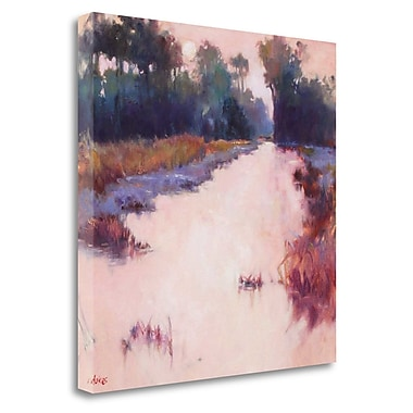 Tangletown Fine Art 'Coral Dawn' Print on Wrapped Canvas; 26'' H x 26'' W