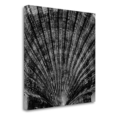 Tangletown Fine Art 'Crystal Cove - 40' Graphic Art Print on Wrapped Canvas; 25'' H x 25'' W
