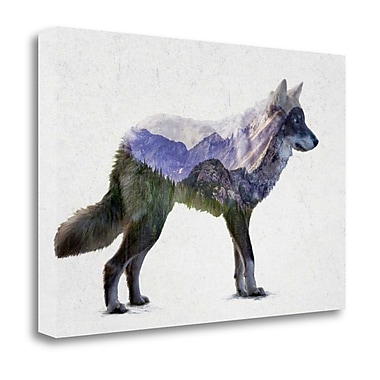 Tangletown Fine Art 'Rocky Mountain Gray Wolf' Print on Wrapped Canvas; 20'' H x 29'' W