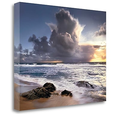 Tangletown Fine Art 'Forces of Nature' Graphic Art Print on Wrapped Canvas; 25'' H x 31'' W