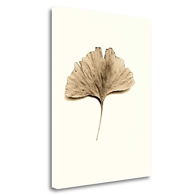 Tangletown Fine Art 'Ginkgo Leaf' Graphic Art Print on Wrapped Canvas; 40'' H x 31'' W