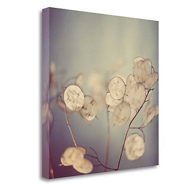 Tangletown Fine Art 'There is Softness' Graphic Art Print on Wrapped Canvas; 35'' H x 35'' W