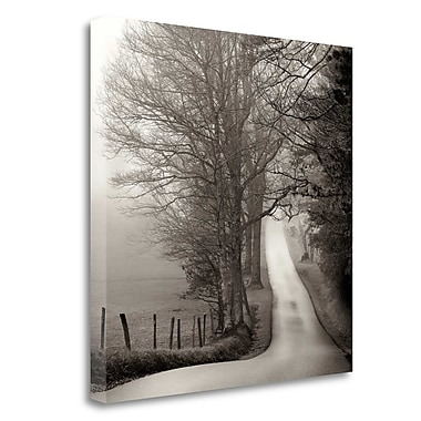 Tangletown Fine Art 'Cades Cove' Photographic Print on Wrapped Canvas; 25'' H x 25'' W