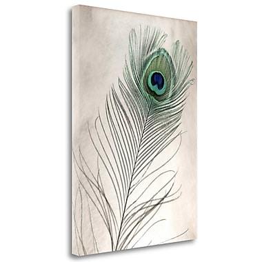 Tangletown Fine Art 'Feathers - 11' Graphic Art Print on Wrapped Canvas; 48'' H x 35'' W