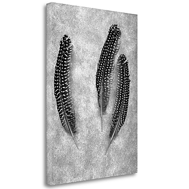 Tangletown Fine Art 'Feather B-W - 2' Graphic Art Print on Wrapped Canvas; 39'' H x 28'' W