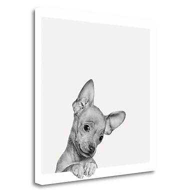 Tangletown Fine Art 'Sweet Chihuahua' Graphic Art Print on Wrapped Canvas; 25'' H x 25'' W