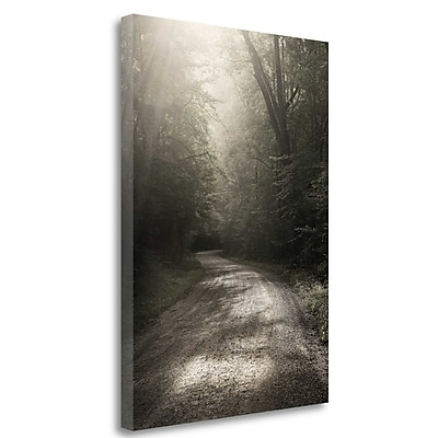 Tangletown Fine Art 'Back Country Road' Photographic Print on Wrapped Canvas; 26'' H x 18'' W