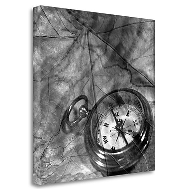 Tangletown Fine Art 'Retro- Compass' Graphic Art Print on Wrapped Canvas; 35'' H x 35'' W