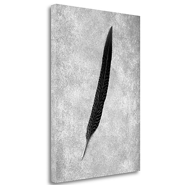 Tangletown Fine Art 'Feathers - 4' Graphic Art Print on Wrapped Canvas; 24'' H x 18'' W