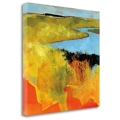 Tangletown Fine Art 'Backwaters' Print on Wrapped Canvas; 20'' H x 20'' W