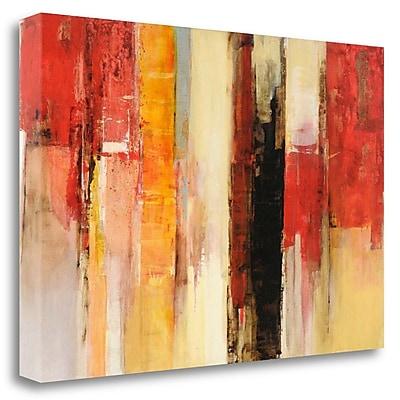 Tangletown Fine Art 'Serie Vertigo' Print on Wrapped Canvas; 20'' H x 29'' W