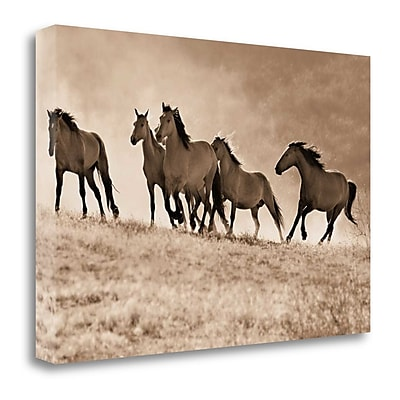 Tangletown Fine Art 'Kicking Dust' Graphic Art Print on Wrapped Canvas; 22'' H x 33'' W