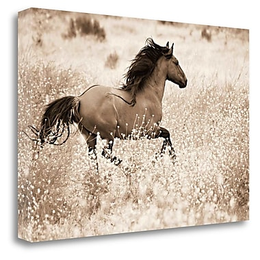 Tangletown Fine Art 'Running Free' Graphic Art Print on Wrapped Canvas; 18'' H x 28'' W