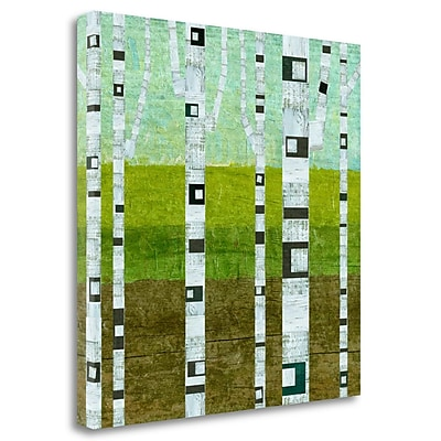 Tangletown Fine Art 'Summer Birches' Graphic Art Print on Wrapped Canvas; 35'' H x 35'' W