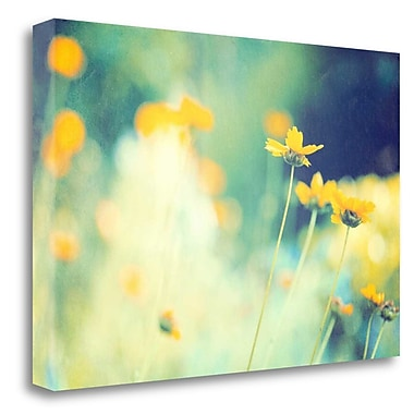 Tangletown Fine Art 'In the Meadow' Graphic Art Print on Wrapped Canvas; 17'' H x 26'' W
