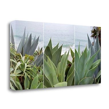 Tangletown Fine Art 'Laguna Coast - 2' Photographic Print on Wrapped Canvas; 17'' H x 34'' W