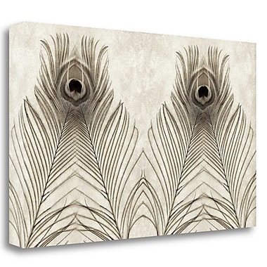 Tangletown Fine Art 'Feathers Panel - 5' Graphic Art Print on Wrapped Canvas; 29'' H x 48'' W