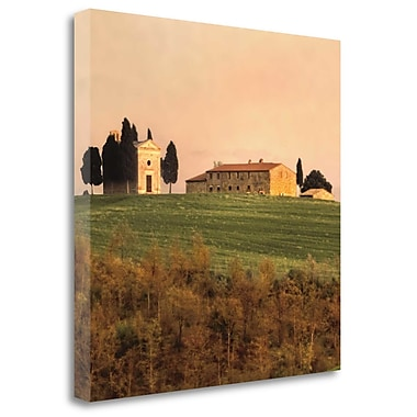 Tangletown Fine Art 'Evening Light Tuscany' Photographic Print on Wrapped Canvas; 30'' H x 30'' W