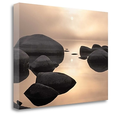 Tangletown Fine Art 'Silver and Gold' Photographic Print on Wrapped Canvas; 30'' H x 40'' W