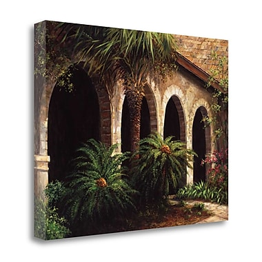 Tangletown Fine Art 'Sago Arches' Photographic Print on Wrapped Canvas; 28'' H x 36'' W