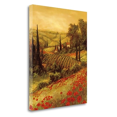 Tangletown Fine Art 'Toscano Valley II' Print on Wrapped Canvas; 32'' H x 25'' W