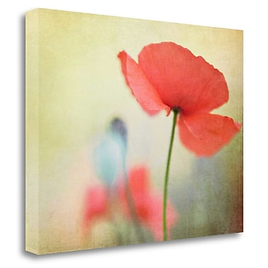 Tangletown Fine Art 'Poppy' Graphic Art Print on Wrapped Canvas; 30'' H x 40'' W