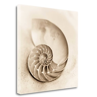 Tangletown Fine Art 'Il Oceano No. 4' Photographic Print on Wrapped Canvas; 21'' H x 21'' W