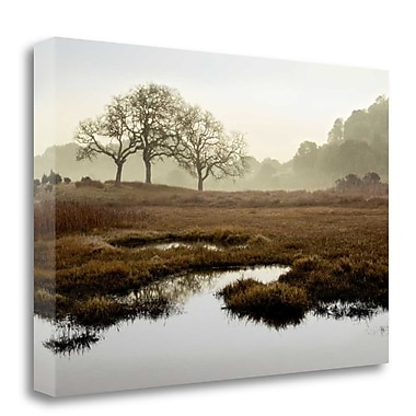 Tangletown Fine Art 'Island Oak Trees' Photographic Print on Wrapped Canvas; 18'' H x 27'' W
