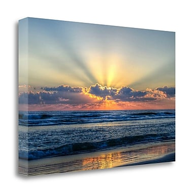 Tangletown Fine Art 'Radiant Dawn' Photographic Print on Wrapped Canvas; 15'' H x 22'' W