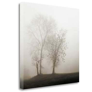 Tangletown Fine Art 'Four Trees' Photographic Print on Wrapped Canvas; 23'' H x 23'' W