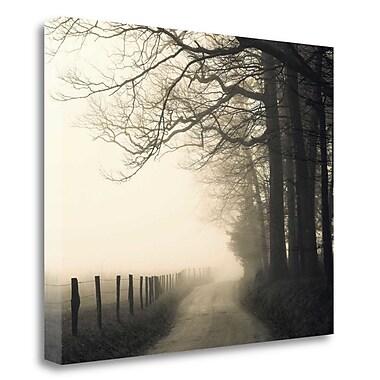 Tangletown Fine Art 'Hyatt Lane' Photographic Print on Wrapped Canvas; 32'' H x 40'' W