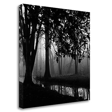 Tangletown Fine Art 'Woodland No. 1' Photographic Print on Wrapped Canvas; 26'' H x 26'' W