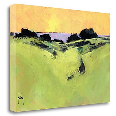 Tangletown Fine Art 'Daybreak' Print on Wrapped Canvas; 28'' H x 40'' W
