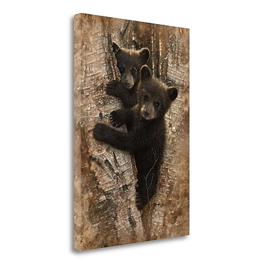 Tangletown Fine Art 'Curious Cubs' Photographic Print on Wrapped Canvas; 34'' H x 24'' W