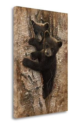 Tangletown Fine Art 'Curious Cubs' Photographic Print on Wrapped Canvas; 29'' H x 21'' W