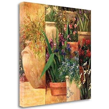 Tangletown Fine Art 'Flower Pots Left' Graphic Art Print on Wrapped Canvas; 27'' H x 27'' W