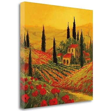Tangletown Fine Art 'Poppies of Toscano II' Graphic Art Print on Wrapped Canvas; 35'' H x 35'' W