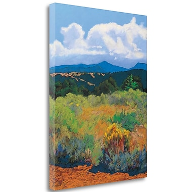 Tangletown Fine Art 'Distant Hills' Print on Wrapped Canvas; 37'' H x 28'' W