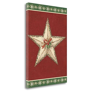 Tangletown Fine Art 'Holiday Star II' Graphic Art Print on Wrapped Canvas; 27'' H x 18'' W