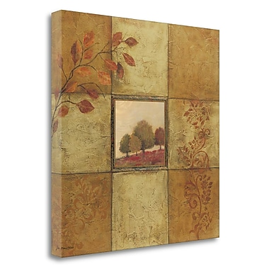 Tangletown Fine Art 'Golden Day II' Print on Wrapped Canvas; 35'' H x 35'' W