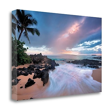 Tangletown Fine Art 'Cool Breeze' Photographic Print on Wrapped Canvas; 15'' H x 23'' W