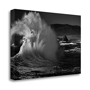 Tangletown Fine Art 'Splash' Photographic Print on Wrapped Canvas; 23'' H x 34'' W