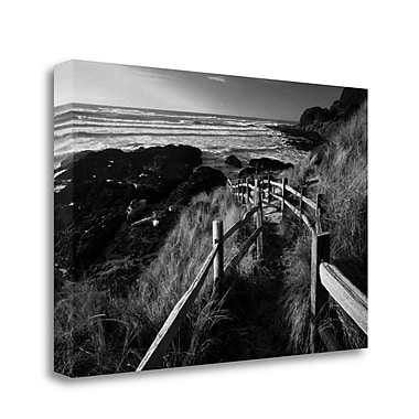 Tangletown Fine Art 'Pathway to Beach' Photographic Print on Wrapped Canvas; 32'' H x 48'' W