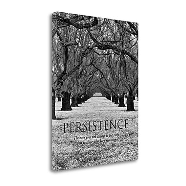 Tangletown Fine Art 'Persistence' Graphic Art Print on Wrapped Canvas; 45'' H x 35'' W