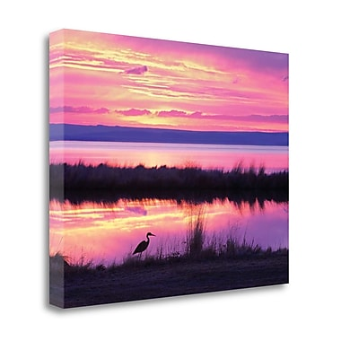 Tangletown Fine Art 'Sunset Crane' Photographic Print on Wrapped Canvas; 32'' H x 41'' W